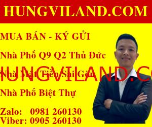 https://hungviland.com/wp-content/uploads/2019/08/300X250.png
